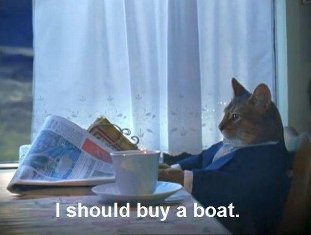 boatcat